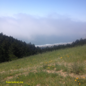 Stinson Beach in Fog