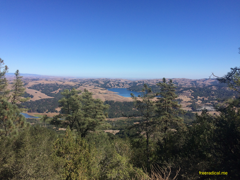 Briones Reservoir - The fog's all gone